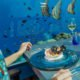 5.8 Undersea Restaurant Hurawalhi Gifts